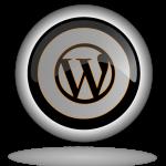 silver logo S